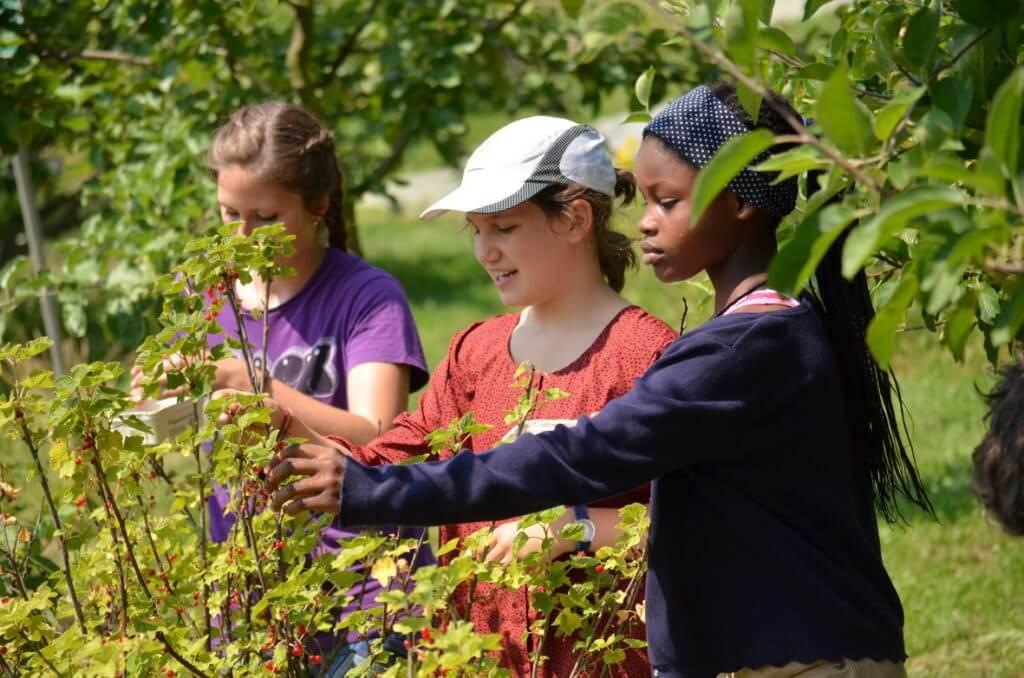 Landstunde an der Blote Vogel Schule in Witten. Auch das gehört zum Gartenbau Unterricht.